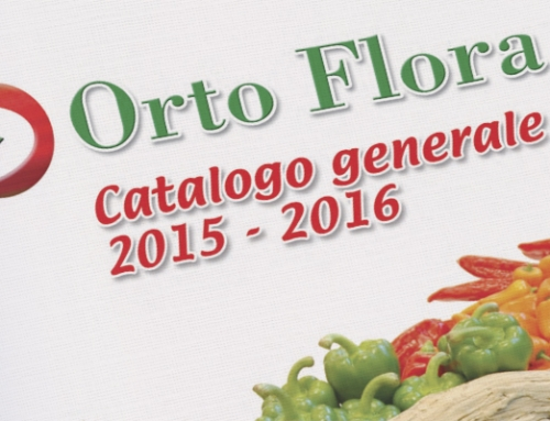 Ortoflora › catalogo